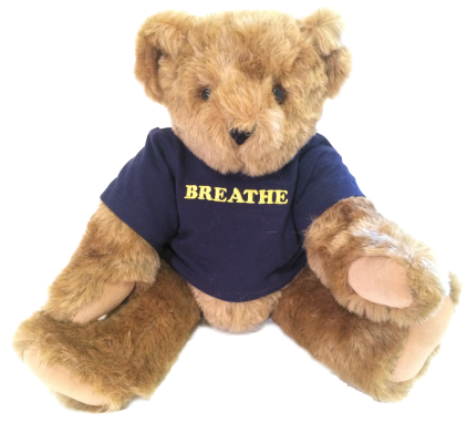 Francis the Breathe Bear